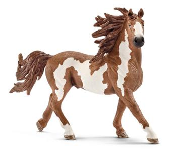 188243 Pinto Hengst 13794 Schleich Farm World.jpg